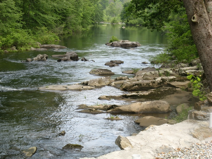 39 best nc images on pinterest graham north carolina for Best trout fishing in nc