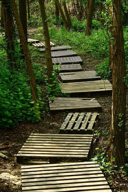 Pallet path