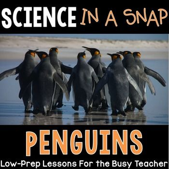 $ Science in a Snap: All About Penguins {Interactive PowerPo