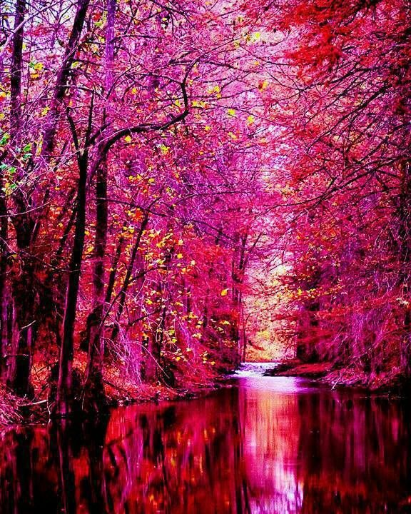 (via (1) 7 Surreal Landscapes | Pink, Sayings and... | chasingthegreenfaerie