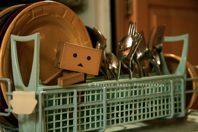Dishwasher Fun | Flickr - Photo Sharing!