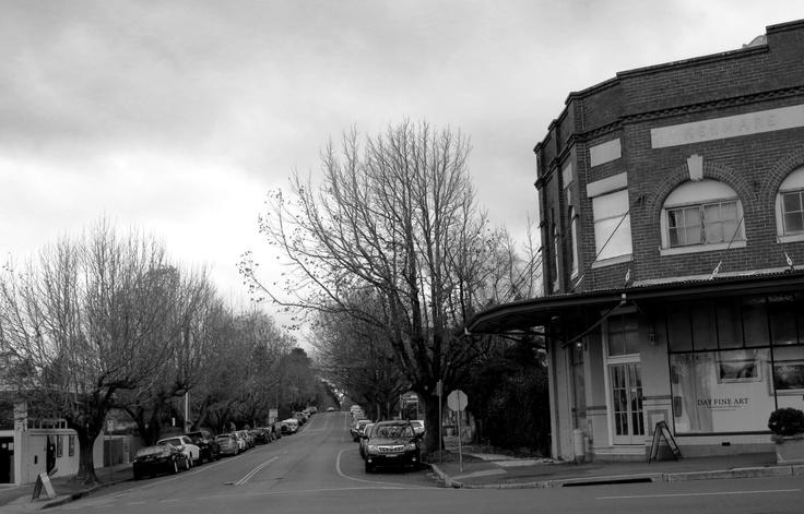 Wentworth Street, Blackheath - minus bud and bloom. Brrrrr!
