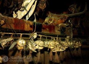 hunting-trofeuums_mentawai_siberut-island_sumatran-trails-001