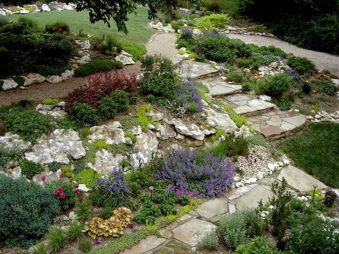 Low maintenance rock wall landscaping photo low for Low maintenance native plants