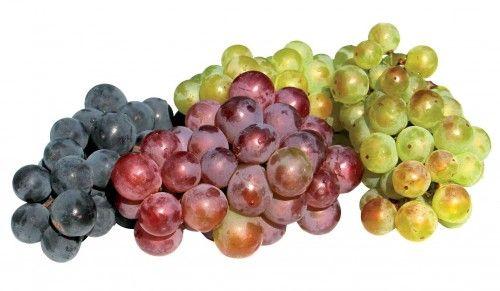 <p>Smlsněte si na ideálním ovoci pro zničení dolíčků i přebytečných kil.</p>