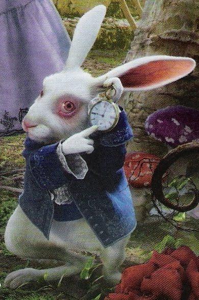 """Alicia: ¿Cuánto tiempo es para siempre?  Conejo blanco: """"A veces... sólo un segundo..."""" - Alicia en el País de las Maravillas:"""