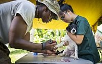 160702-N-BB534-225  DARAGA, Philippines (July 2, 2016) Spc. Elys Tovo shaves a dog's paw so he can insert an IV while Janice Magayano, senior technician at Bicol University College of Veterinarian Medicine, holds the dog at Anislag Elementary School during Pacific Partnership 2016. Tovo and Magayano were at the school as part of a cooperative health engagement where Pacific Partnership personnel attached to hospital ship USNS Mercy (T-AH 19) and members of the Armed Forces of the…