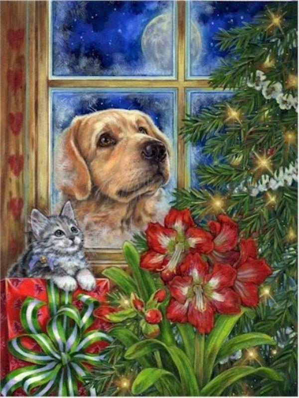 Donna Race, artist ~ dog cat Christmas tree amaryllis