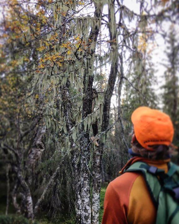 Den fine høsten ser ikke ut til å slippe taket helt enda. Samtidig blir det kaldere og kaldere og vinteren nærmer seg. Følg @campvillmark på Instagram og varm deg på fine bilder og små hint om hva som venter deg på Camp Villmark 2017. #outdoors, #campinggear, #fishinggear, #ClimbingGear