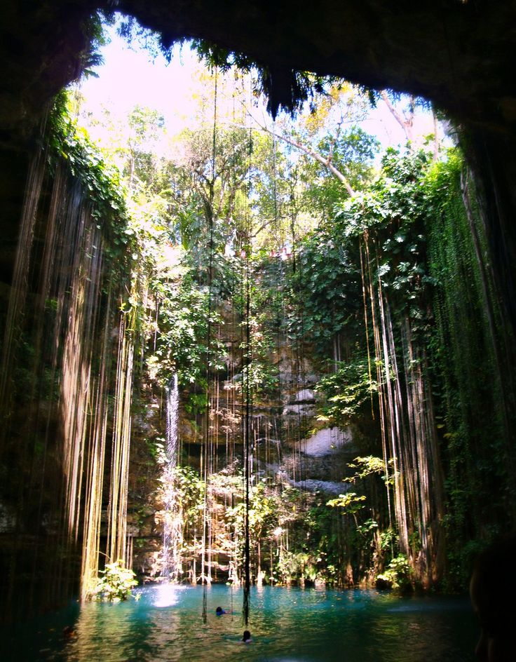 #Mexico #Cenote in the Yucatan Peninsula.  Magical place.