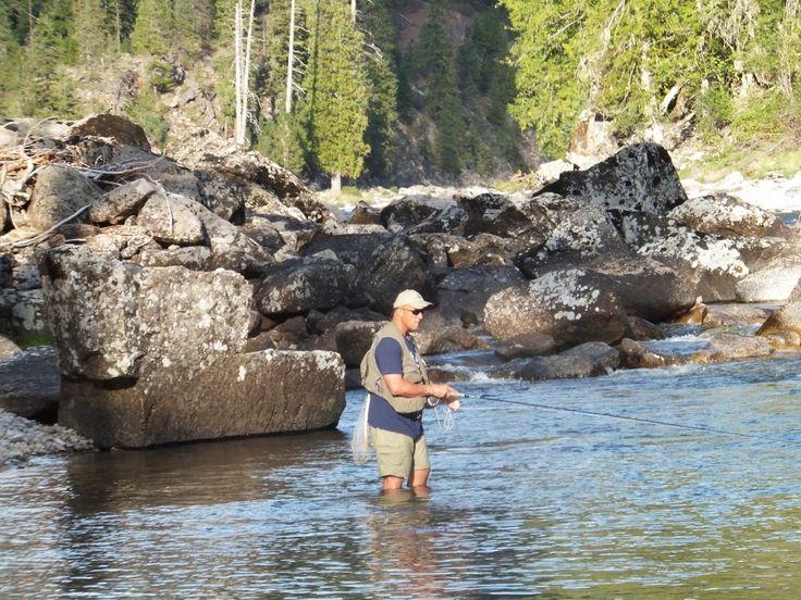 Catching cutthroat trout in Moose Creek #Idaho #flyfishing