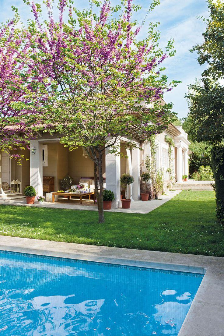 00323551 5 porche con butacas rodeado de plantas junto a for Piscinas en el campo
