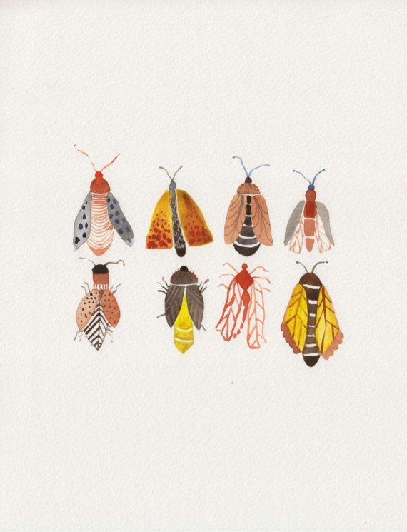 Insect Group Original Watercolor Painting by unitedthread on Etsy