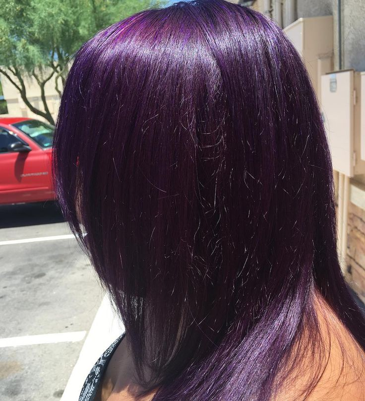 The gallery for --> Dark Brown Purple Tint Hair Color