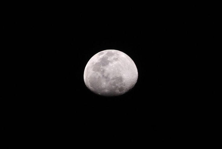 Quite happy with this one. No processing except for cropping from the original shot. Nikon D90 w 55-200mm @ 200mm, ISO800, F10, 1/640sec.