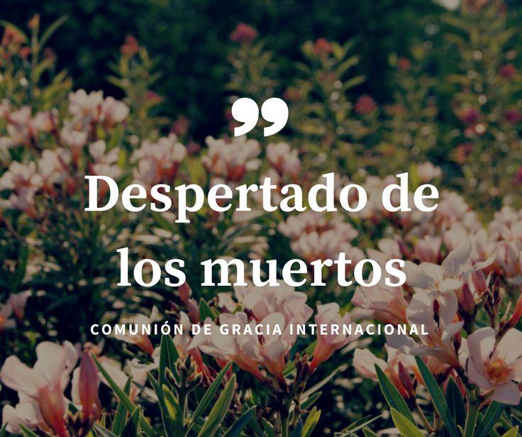 """Cuando Lázaro murió, Jesús le dijo a Marta y María: """"Yo soy la resurrección y la vida; el que cree en mí, aunque esté muerto, vivirá. Y todo aquel que vive y cree en mí, no morirá eternamente. ¿Crees esto?"""" ¿Y tú crees esto? La Comunión Internacional de la Gracia en España te invita a que escuches este sermón del Pastor Pedro Rufián.            Despertado de los muertos               DESPERTADOS-DE-LOS-MUERTOS-Pedro-Rufian.mp3"""