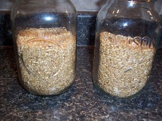 Making Sprouted Flour | The Prairie Homestead