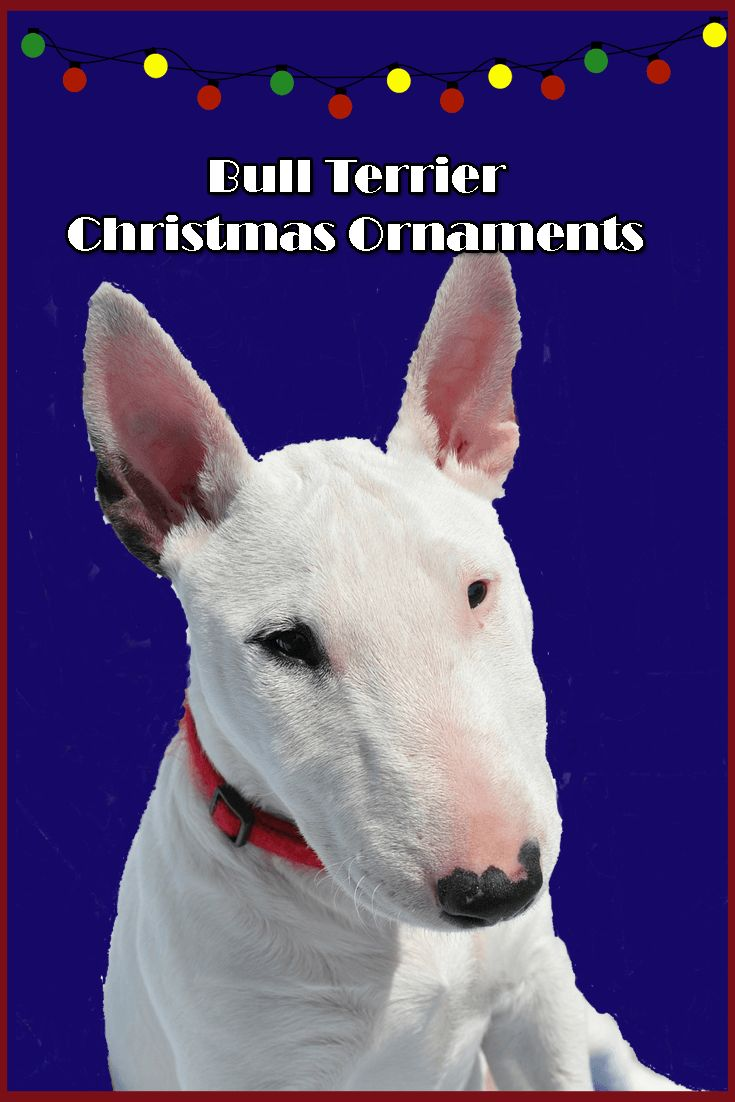 Dog themed christmas ornaments - Gorgeous Bull Terrier Christmas Ornaments How Can You Pick Just One