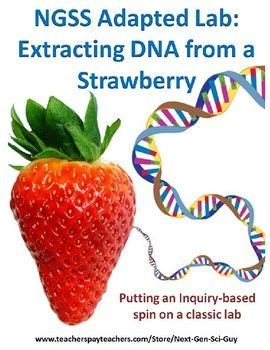 NGSS Next Generation Science Lab | STEM lab | DNA strawberry Inquiry hands-on lab