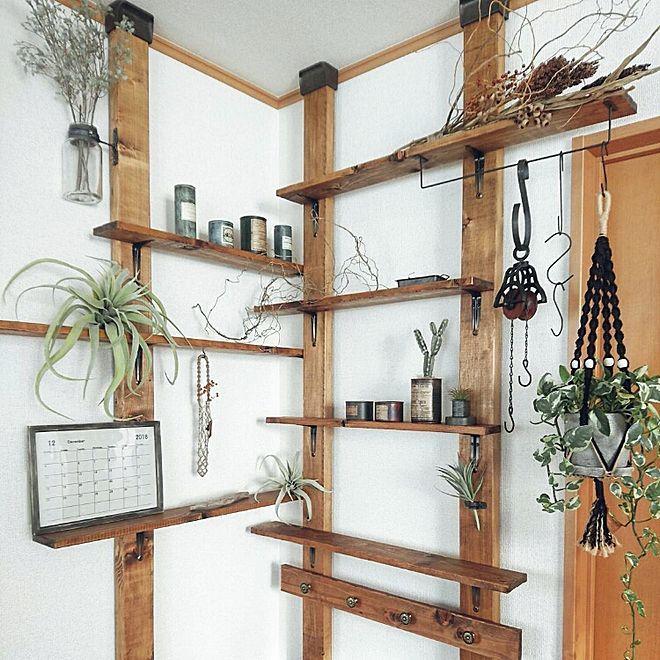 棚 賃貸diy ハンドメイド 観葉植物 81組 などのインテリア実例