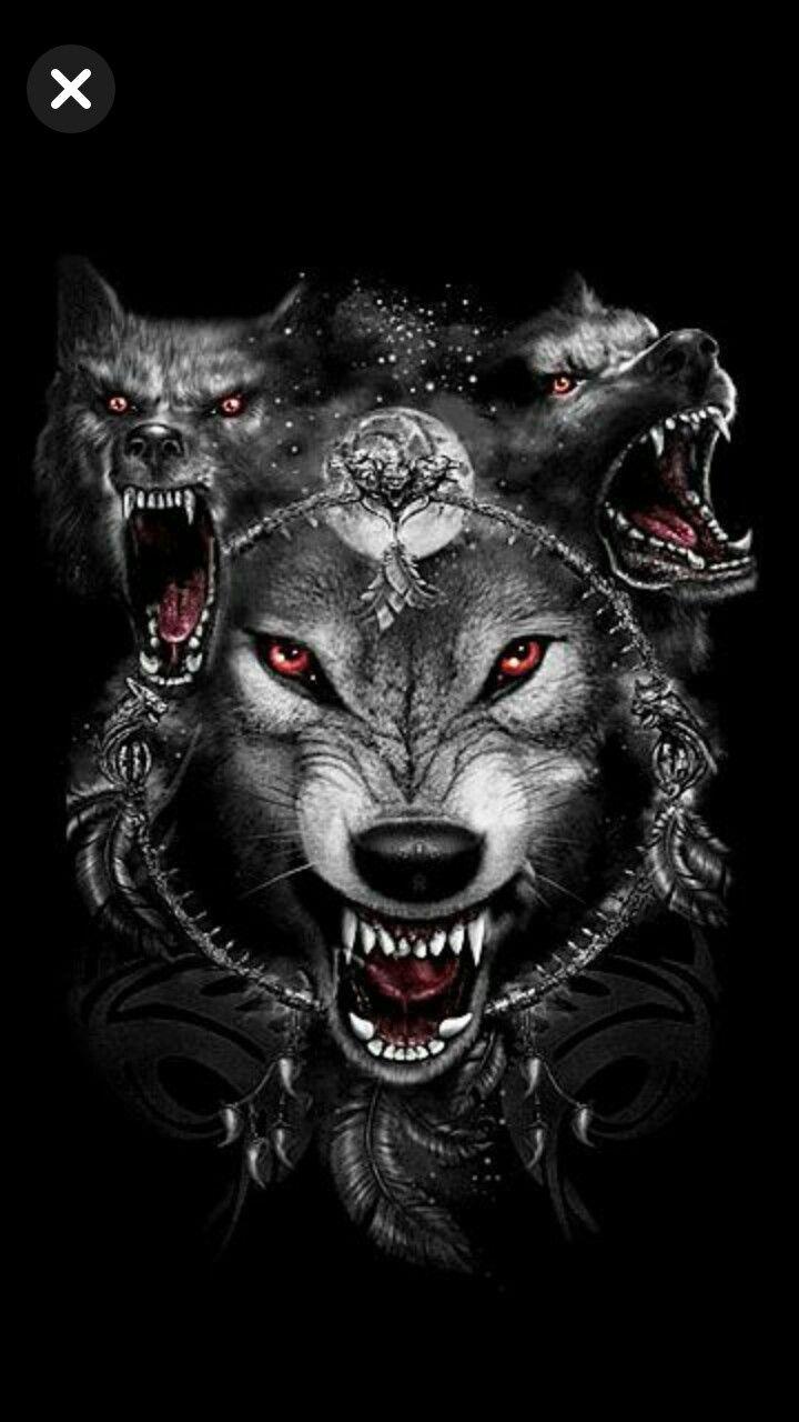 обид забывают злые волки картинки на телефон отличаются