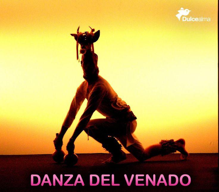 Danza de los Venados, celebrada por los #yaquis y mayos de #Sonora y #Sinaloa. #DulceDato #mexico #visitmexico
