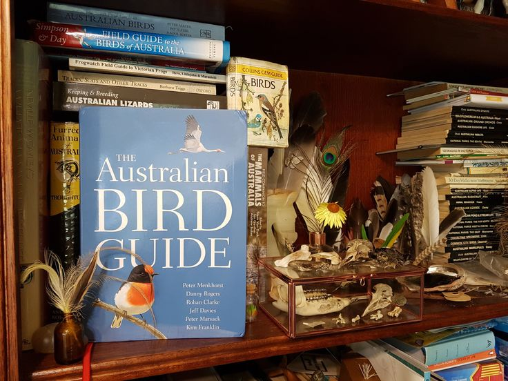 A New Standard: The Australian Bird Guide