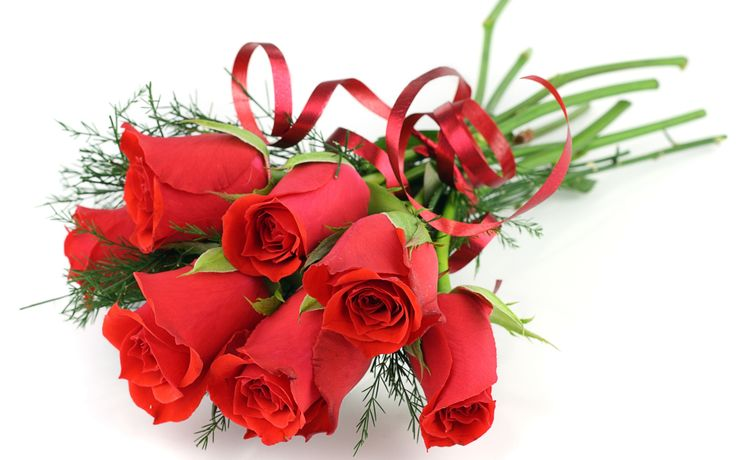 Flowers seem intended for the solace of ordinary humanity. Buy #Beautiful #Flowers online at : www.flower.mu