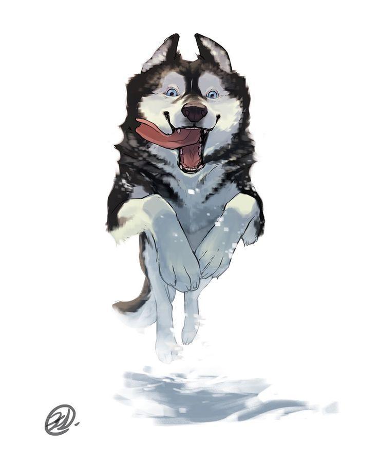 Dog Series - Husky, an art print by Elisa Kwon - INPRNT: