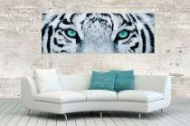 Interior :: Obraz szklany dekoracyjny White Tiger 50x140c (Z35548)