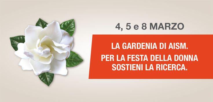 La Gardenia di AISM in piazza il 4, 5 e 8 marzo per la ricerca sulla sclerosi multipla.  Ti aspettiamo!