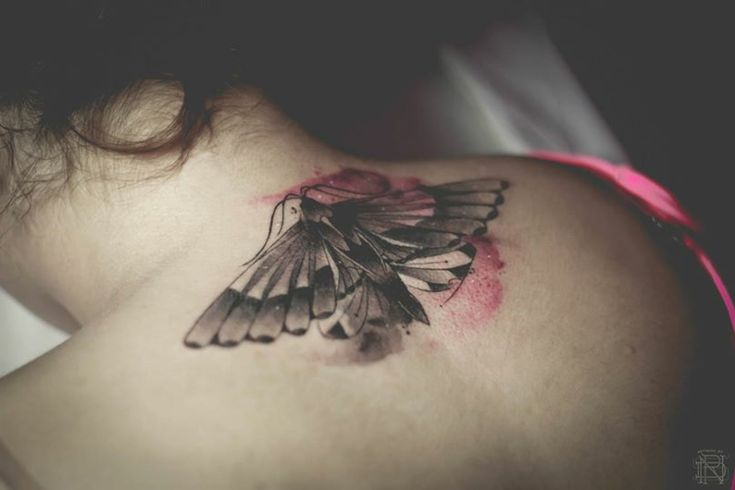 tattoo bilder ideen schulterblatt schmetterling tattoo motive pinterest tattoo bilder. Black Bedroom Furniture Sets. Home Design Ideas
