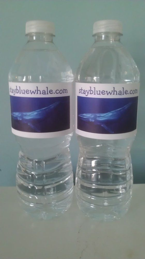 BLUE WHALE INN - Misquamicut Beach, RI, United States. Complimentary Bottle…