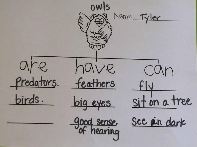 Five in a Row #FIAR: Owl Moon #homeschool