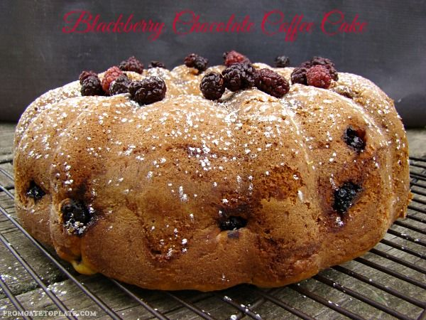 Blackberry Chocolate Coffee Cake -- From Gate to Plate #BundtBakers