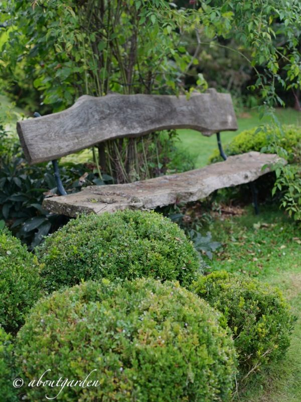 Garden Bench Ideas weathered wooden garden bench beneath large tree Rustic Back With A Bench Link Doesnt Lead Directly To The Pic Though