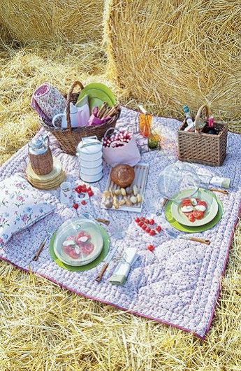 Picnic in the hay ...