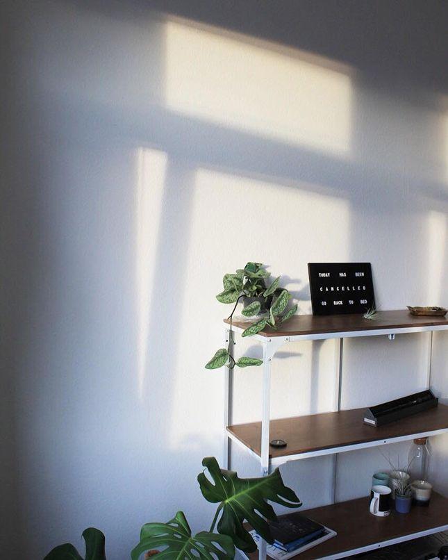 12784 best urban jungle bloggers images on pinterest balcony plants and diy. Black Bedroom Furniture Sets. Home Design Ideas