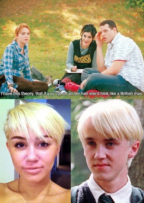 YES.: Miley Cyrus, New Hairs, Real Life, New Haircuts, Mean Girls Quotes, Harry Potter, Toms Felton, Draco Malfoy, Mileycyrus