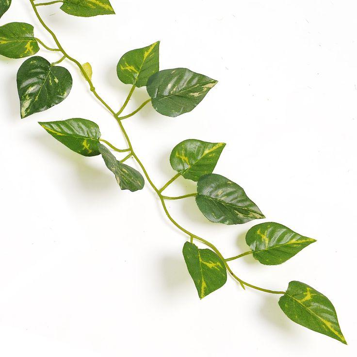 15 pines de jard n de hoja perenne que no te puedes perder for Arboles de jardin de hoja perenne