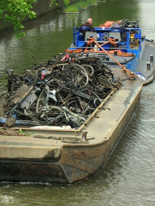 Cleaning the canals: a lot of rusty bikes. Wow, we really need to take care of our waterways!