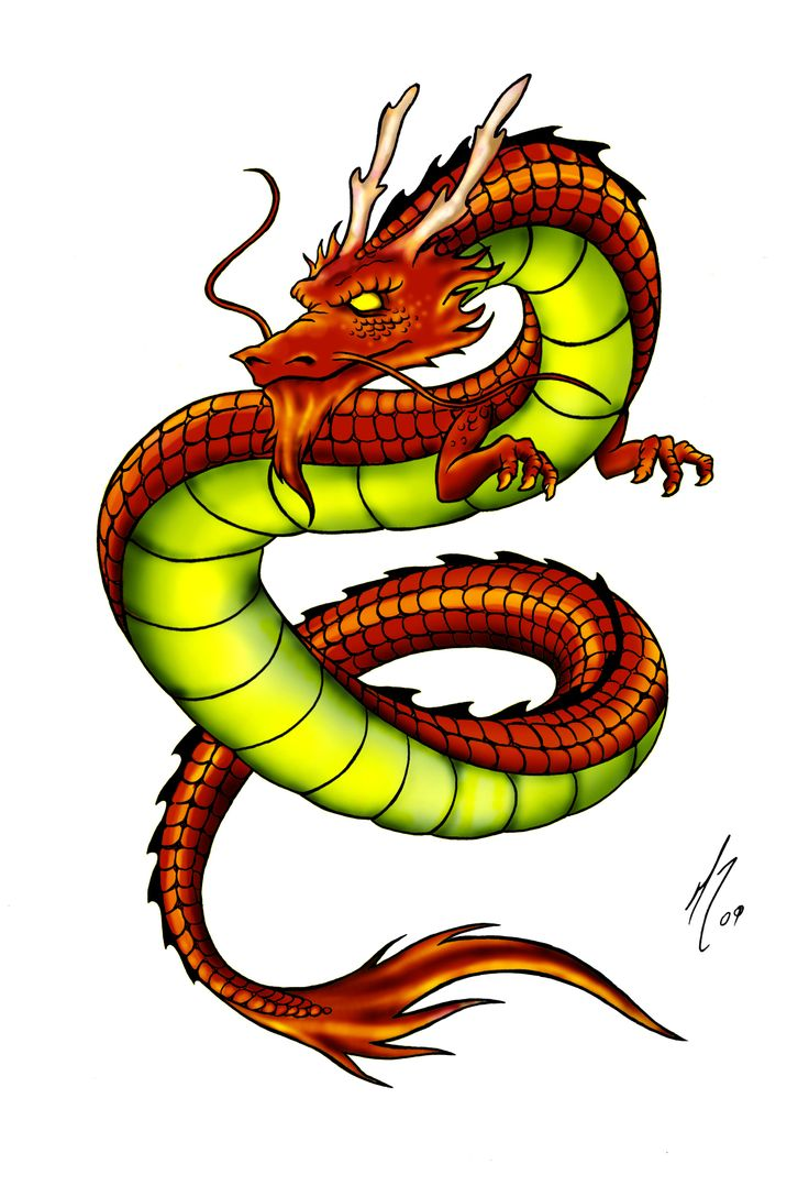 8 best chinese dragon images on pinterest chinese dragon dragon