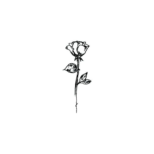 Line Drawing Rose Tattoo : Best ideas about line tattoos on pinterest symbolic