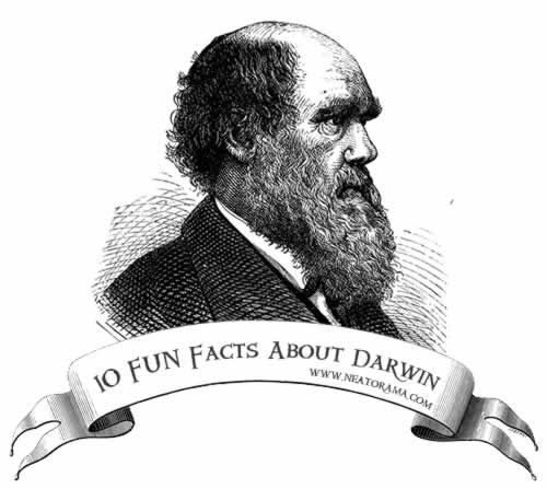 Everyone knows about Charles Darwin and his theory of natural selection, but did you know that he once ate an owl, just for kicks? Or that he almost didn't make it aboard HMS Beagle because of the shape of his nose? Behold Neatorama's 10 Fun Facts About Charles Darwin:1. Darwin Once Ate an OwlDarwin was an inquisitive man. Sure he was curious about nature and all that science stuff, but he's also a guy. So when he saw strange animals, he often wondered what they would tas