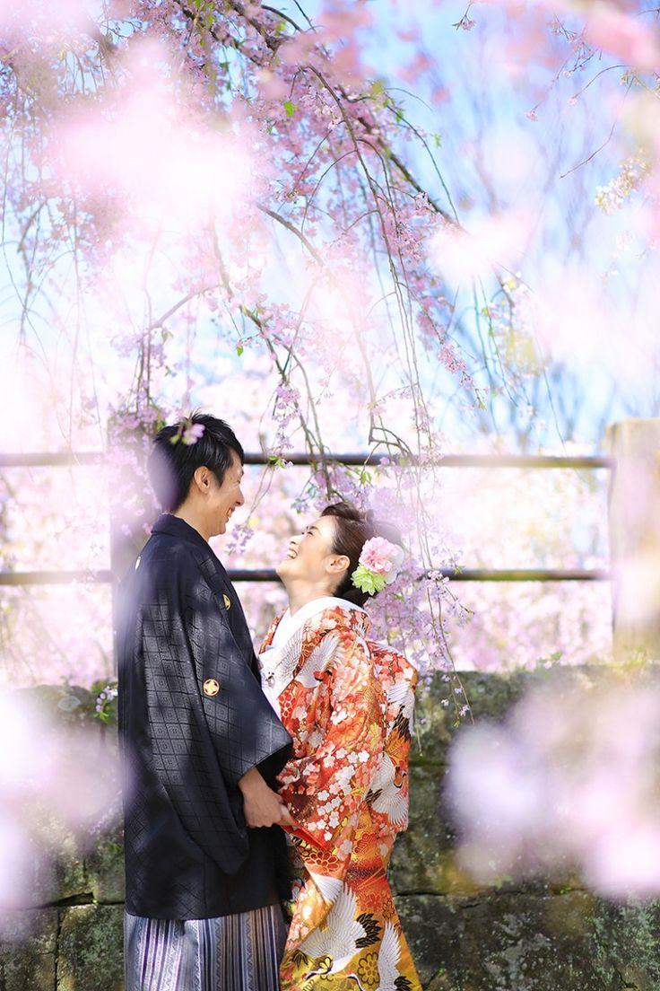 桜の樹の下で *和装 前撮り参考例*