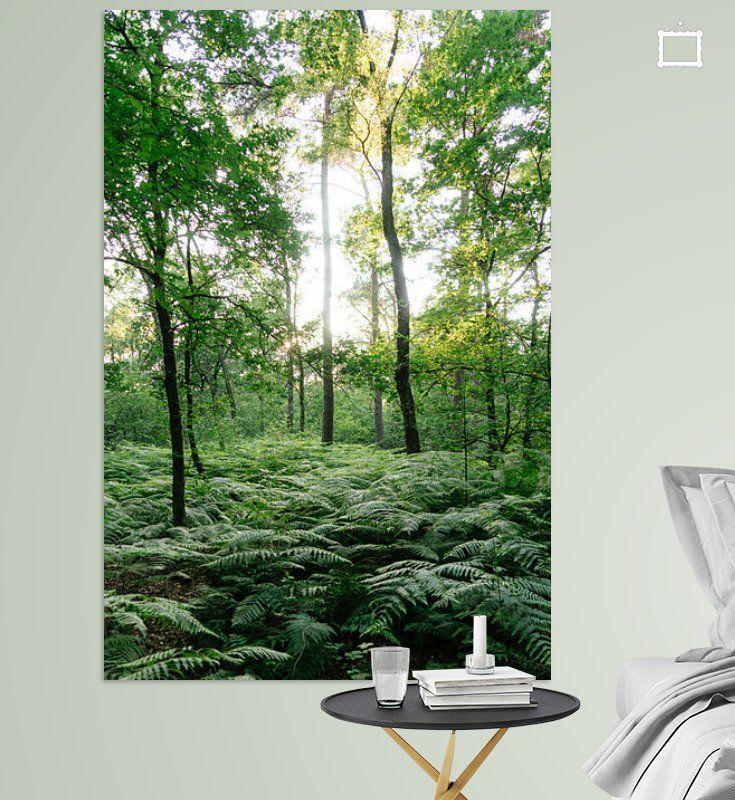 Forest Through The Trees Van Thomas Duiker Op Canvas Behang En Meer Behang Canvas Landschappen