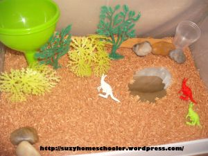 This Kangaroo Sensory Habitat bin includes colored rice to resemble the red soils of Australia. I would try to use more natural materials for the trees and more natural looking kangaroos. I wonder if I could find other Australian animals to include such as Wallabys. - Australia Theme Week from Suzy Homeschooler (1)