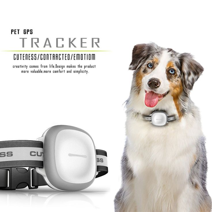 Mini IP66 Waterproof Pets Collar GPS Tracker Real time Locator GPS+LBS+WIFI Location. GPS type: GPS TrackerVoltage: 5VModel Name: MK2Screen Size: Under 2 InchesSpecial Feature: WaterproofGps Module: YesBrand Name: greattopItem Size: 65*50*25mmBattery Life: 30 Hours & UpMini IP66 Waterproof Pets Collar GPS Tracker Real time Locator GPS+LBS+WIFI Location Locator for Dog Cat Tracking Geofence