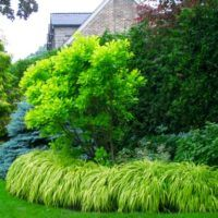 30 years, 30 gardens, Through the Garden Gate 2017 – Toronto Gardens