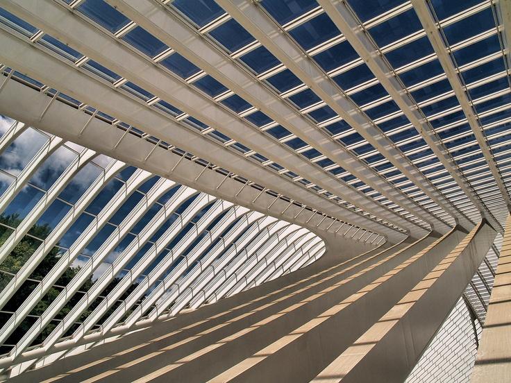 Santiago CalatravaArchitecture Pattern, Architecture Elements, Architecture Ditail, Architects Santiago, Santiago Calatrava, Industrial Design, Heart Architecture, Architecture Details, Elites Design
